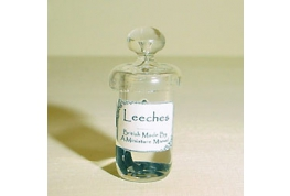 Glass Jar Of Leeches