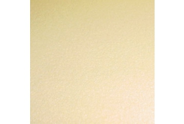 Cream Carpeting