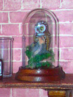 Dolls House Taxidermy Owl - Click to Enlarge