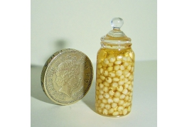 1:12 Scale Victorian Style Jar Of Pickled Onions