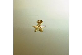 Gold Star With Ring