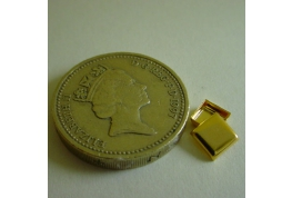 Tiny Gold Plated Tin