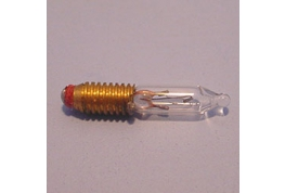 Screw In Bulb